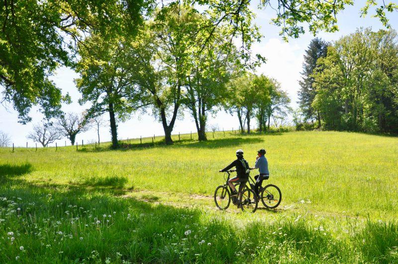 vélo verdure vigan Redim
